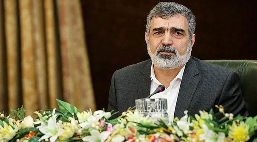 ايران تكشف عن مسببي العمل التخريبي في نطنز